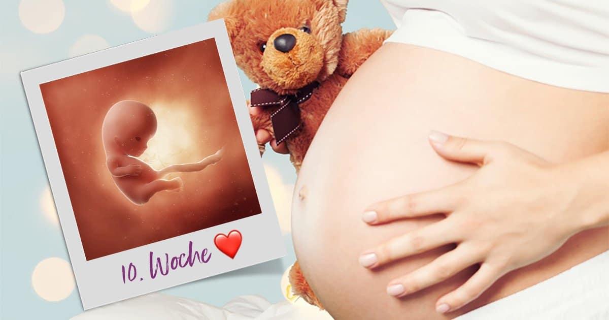 10. SSW (Schwangerschaftswoche)