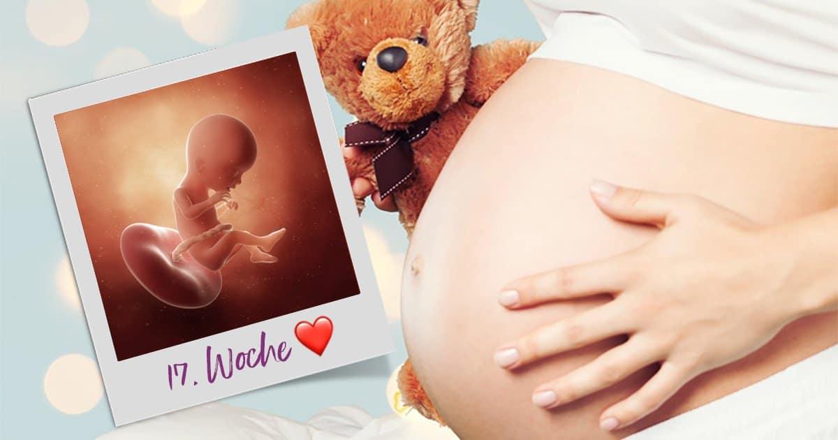 17. SSW (Schwangerschaftswoche)
