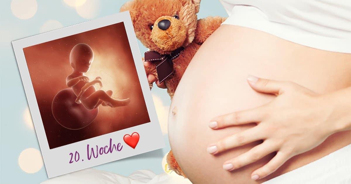 20. SSW (Schwangerschaftswoche)