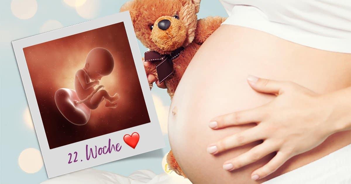 22. SSW (Schwangerschaftswoche)