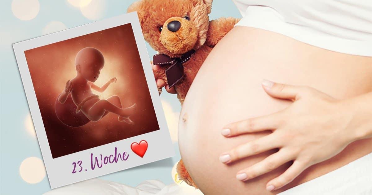 23. SSW (Schwangerschaftswoche)