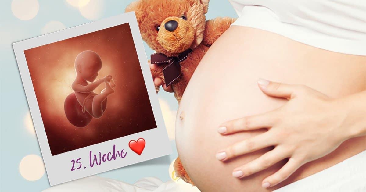 25. SSW (Schwangerschaftswoche)