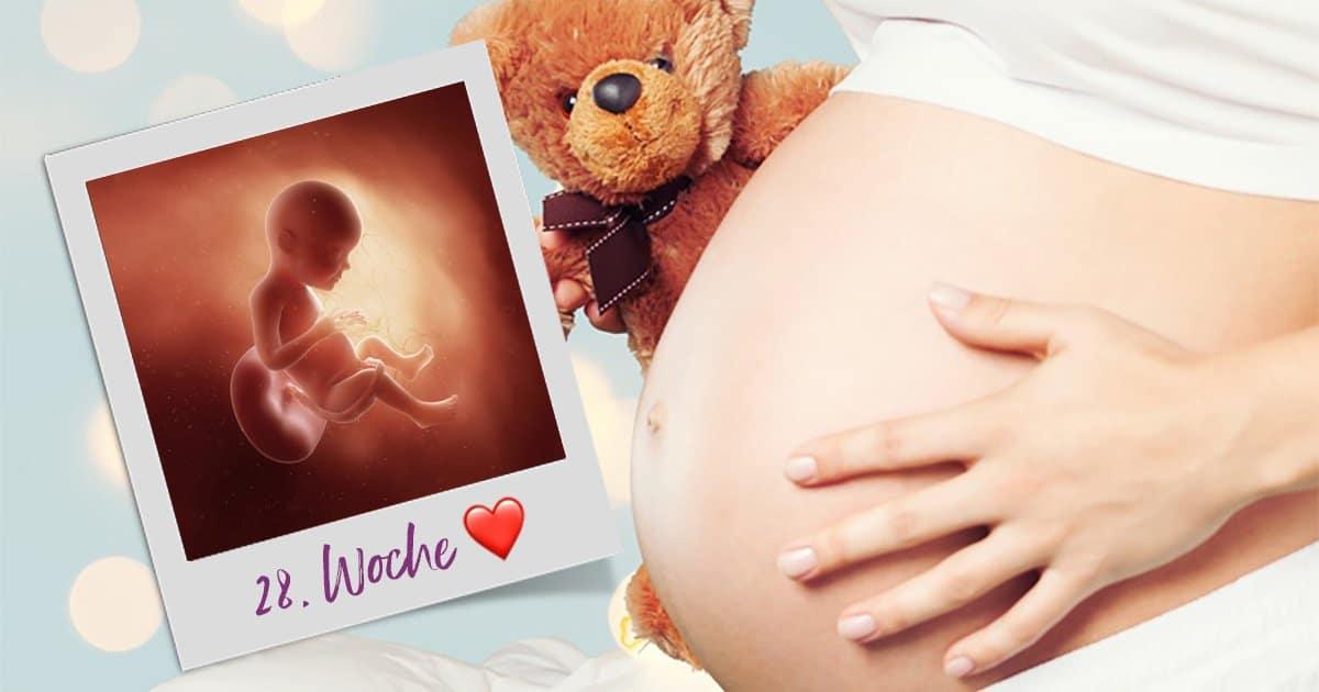 28. SSW (Schwangerschaftswoche)