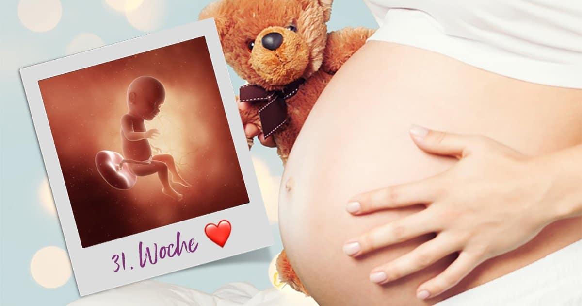 31. SSW (Schwangerschaftswoche)