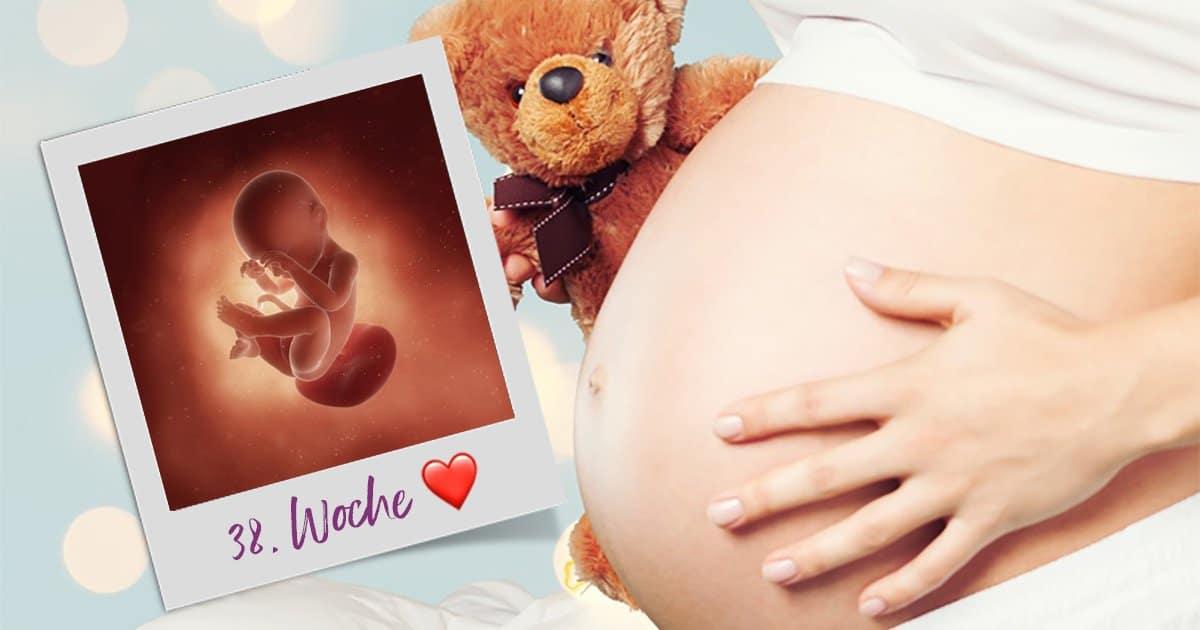 38. SSW (Schwangerschaftswoche)