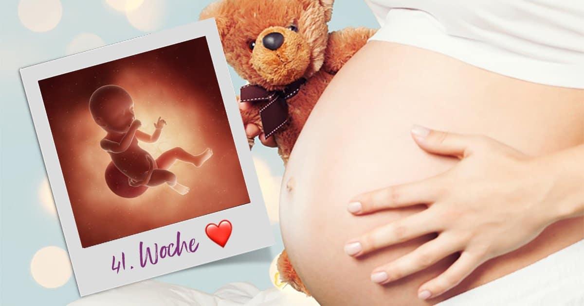 41. SSW (Schwangerschaftswoche)