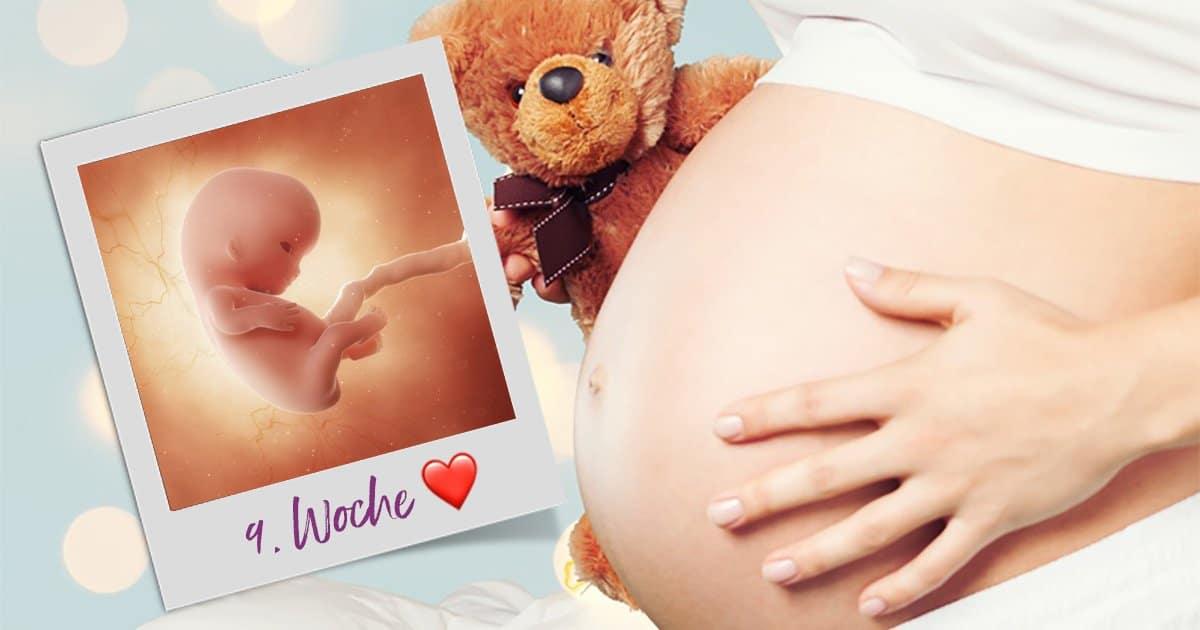 9. SSW (Schwangerschaftswoche)