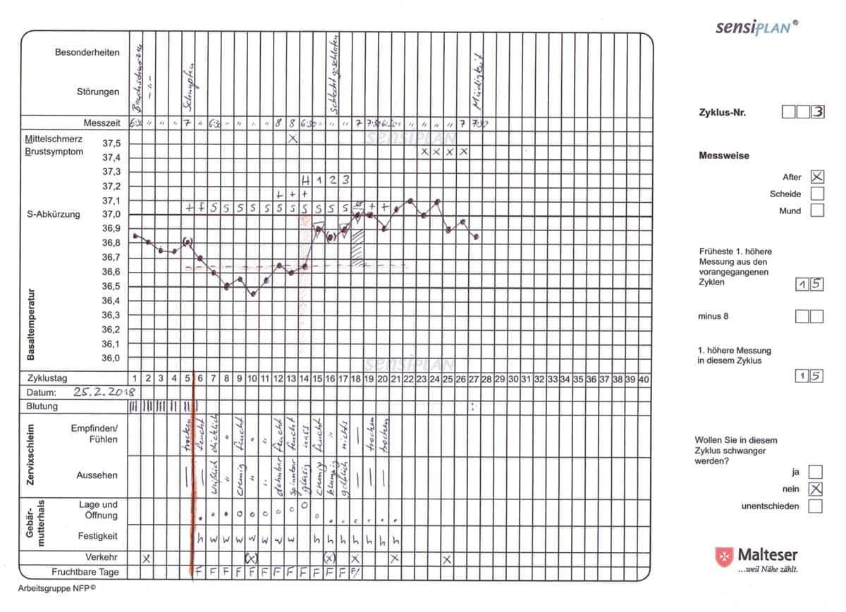 NFP-Beispiel: Ausgefülltes Zyklusblatt