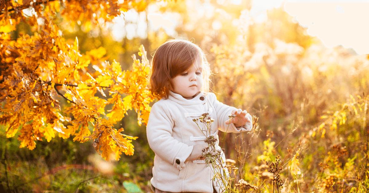 Kinder im Wald: Mädchen entrüstet Pflanzen im Wald
